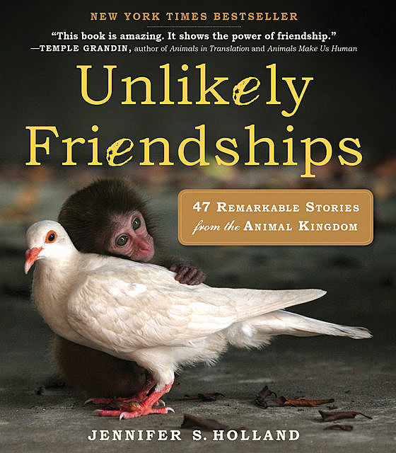 Unlikely Friendships, Jennifer Holland