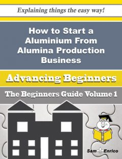 How to Start a Aluminium From Alumina Production Business (Beginners Guide), Wai Cosby