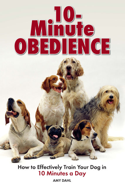 10 Minute Obedience, Amy Dahl