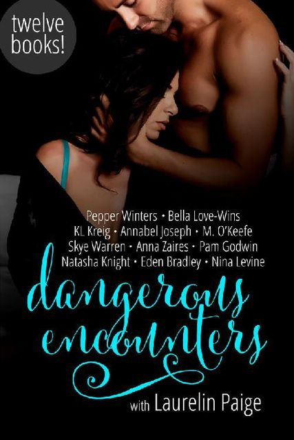 Dangerous Encounters: Twelve Book Boxed Set, Pepper Winters, Natasha Knight, Laurelin Paige, Anna Zaires, Nina Levine, Skye Warren, Bella Love-Wins, Annabel Joseph, Eden Bradley, KL Kreig