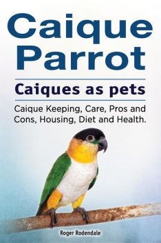 Caique parrot. Caiques as pets. Caique Keeping, Care, Pros and Cons, Housing, Diet and Health, Roger Rodendale