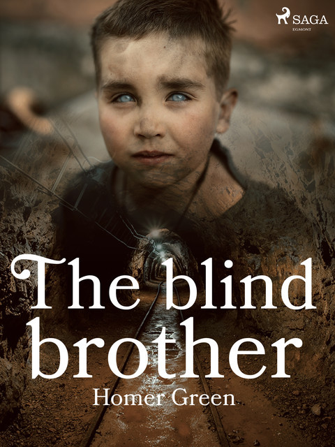 The Blind Brother: A Story of the Pennsylvania Coal Mines, Homer Greene