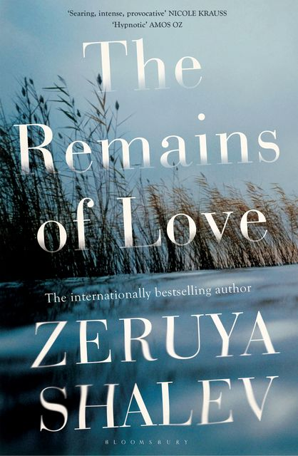 The Remains of Love, Zeruya Shalev