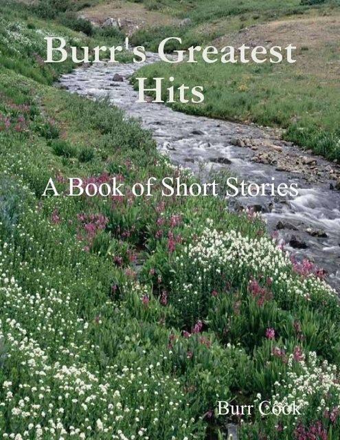 Burr's Greatest Hits – A Book of Short Stories, Burr Cook