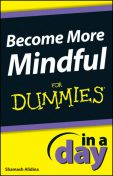 Become More Mindful In A Day For Dummies, Shamash Alidina