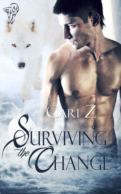 Surviving the Change, Cari Z