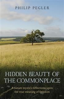 Hidden Beauty of the Commonplace, Philip Pegler