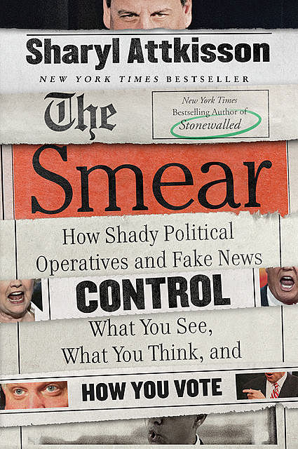The Smear, Sharyl Attkisson
