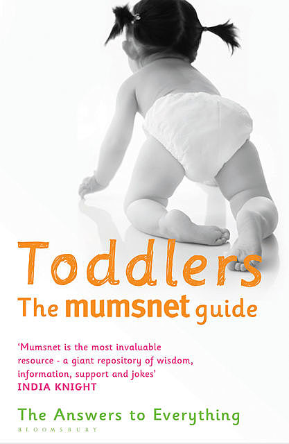 Toddlers: The Mumsnet Guide, Morningpaper Mumsnet, Mumsnet, the Mumsnet Mums