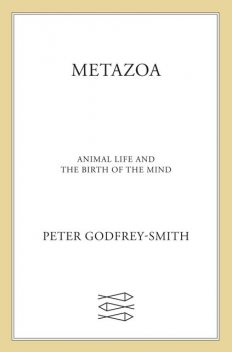Metazoa, Peter Godfrey-Smith
