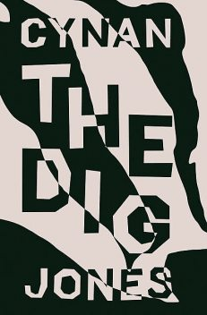 The Dig, Cynan Jones