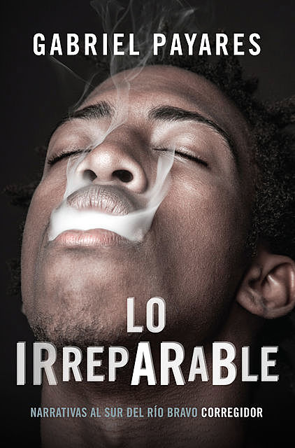 Lo irreparable, Gabriel Payares