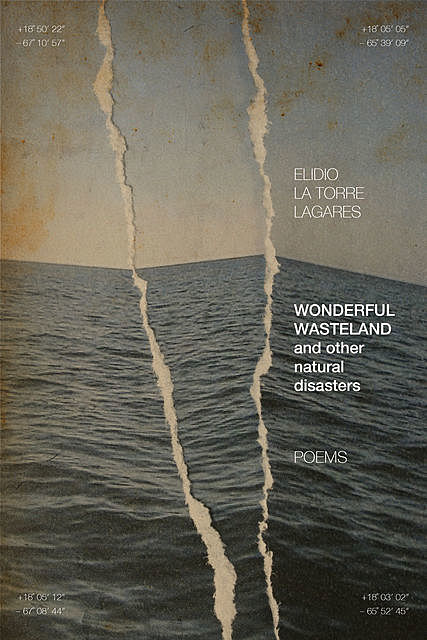Wonderful Wasteland and other natural disasters, Elidio La Torre Lagares