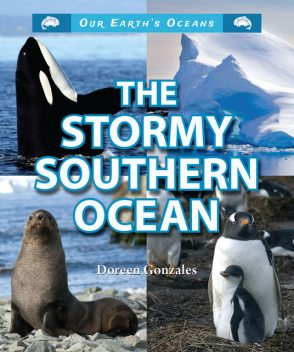 The Stormy Southern Ocean, Doreen Gonzales