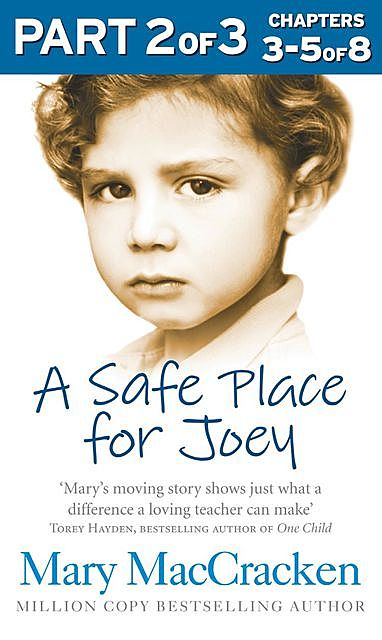 A Safe Place for Joey: Part 2 of 3, Mary MacCracken
