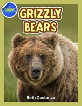 Grizzly Bear Activity Workbook ages 4–8, Beth Costanzo