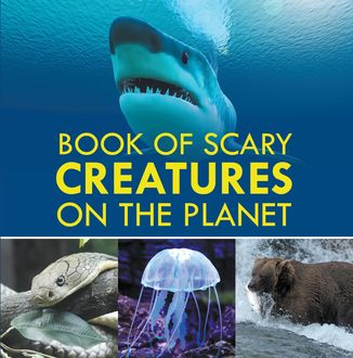Book of Scary Creatures in the Planet, Baby Professor
