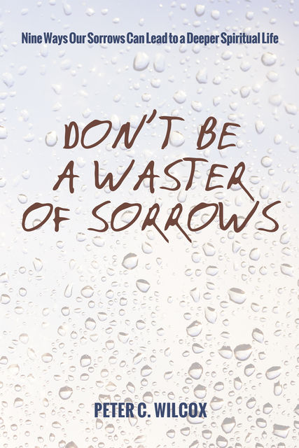 Don't Be a Waster of Sorrows, Peter C. Wilcox