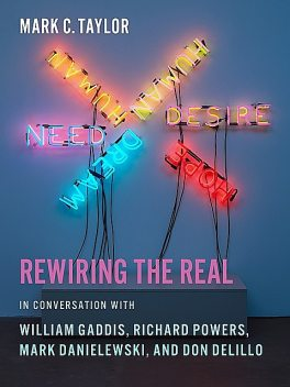 Rewiring the Real, Mark Taylor