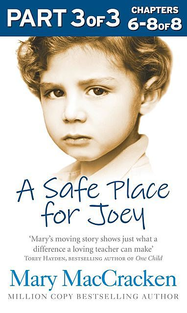 A Safe Place for Joey: Part 3 of 3, Mary MacCracken