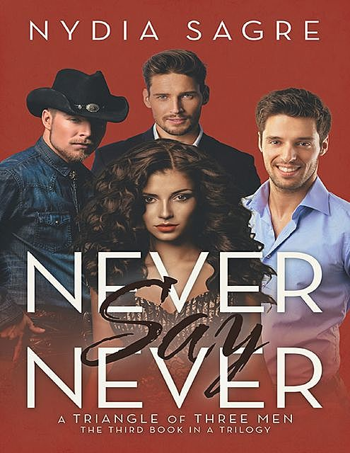 Never Say Never: A Triangle of Three Men the Third Book In a Trilogy, Nydia Sagre