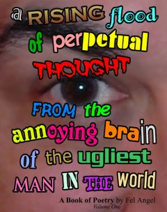 A Rising Flood of Perpetual Thought from the Annoying Brain of the Ugliest Man in the World, Fel Angel