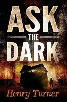 Ask the Dark, Henry Turner