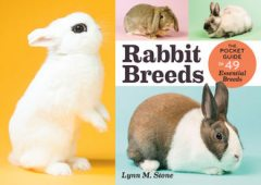 Rabbit Breeds, Lynn M. Stone