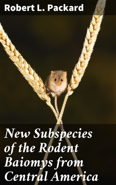 New Subspecies of the Rodent Baiomys from Central America, Robert L.Packard