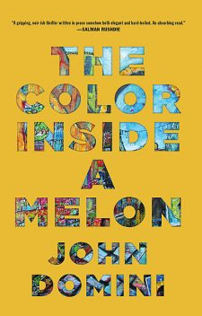 The Color Inside a Melon, John Domini