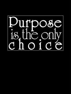 Purpose is the Only Choice, David Hoffmeister