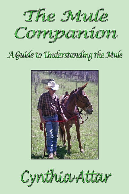 The Mule Companion: A Guide to Understanding the Mule, Cynthia Attar