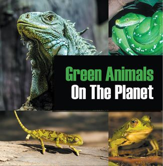Green Animals On The Planet, Baby Professor