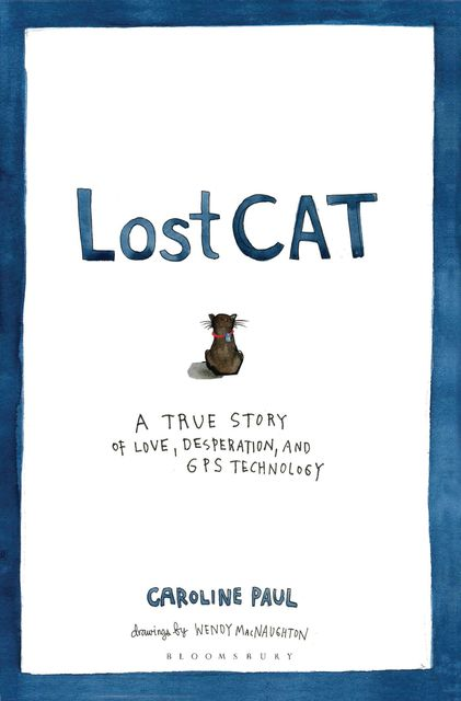 Lost Cat, Caroline Paul