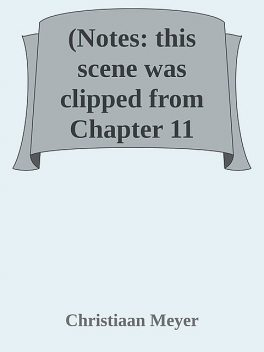 (Notes: this scene was clipped from Chapter 11 «Complications, Christiaan Meyer