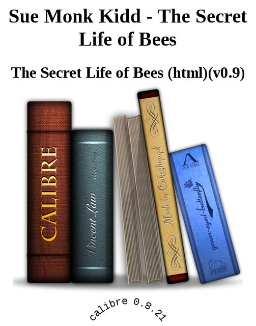 The Secret Life of Bees, Sue Monk Kidd