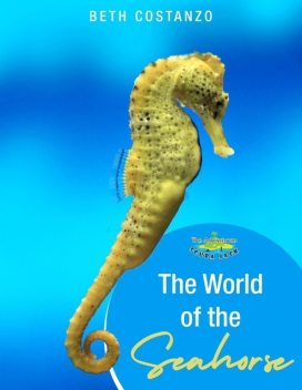 Seahorse Activity Workbook For Kids ages 4–8, Beth Costanzo