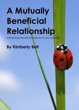 A Mutually Beneficial Relationship, Kimberly Bell