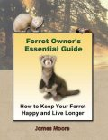 Ferret Owner's Essential Guide: How to Keep Your Ferret Happy and Live Longer, James Moore