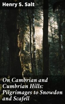 On Cambrian and Cumbrian Hills: Pilgrimages to Snowdon and Scafell, Henry S.Salt