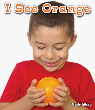 I See Orange, Trudy Micco