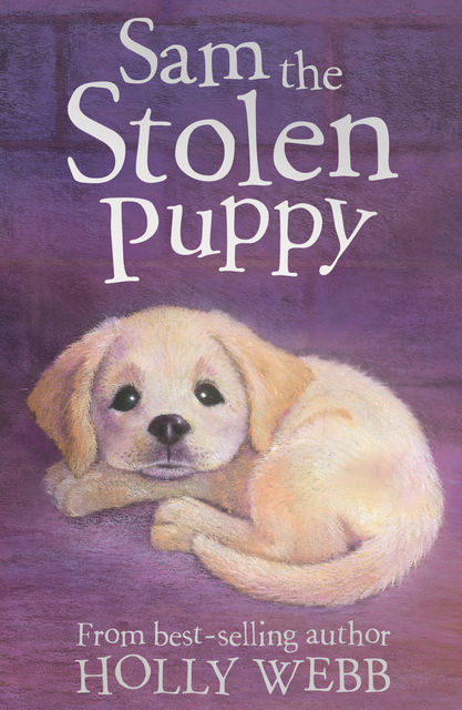 Sam the Stolen Puppy, Holly Webb, Sophy Williams