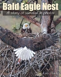 Bald Eagle Nest, Kate Davis