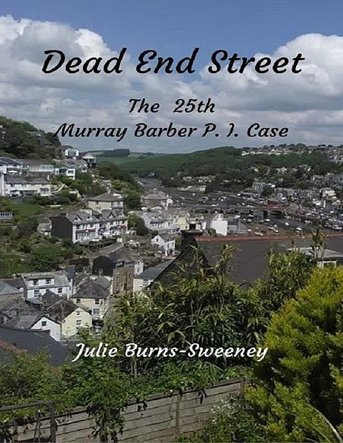 Dead End Street : The 25th Murray Barber P. I. Case, Julie Burns-Sweeney