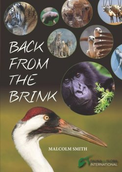 Back from the Brink, Malcolm Smith