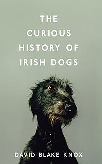 The Curious History of Irish Dogs, David Knox