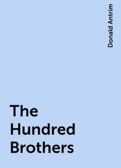 The Hundred Brothers, Donald Antrim