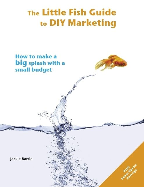 The Little Fish Guide to DIY Marketing: How to Make a Big Splash With a Small Budget, Jackie Barrie