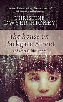 The House on Parkgate Street, Christine Dwyer Hickey