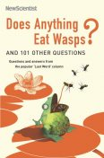 Does Anything Eat Wasps?, Mick O'Hare